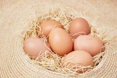 Die Eier, die an eingestellt werden, decken mit Stroh Stockfoto