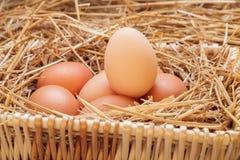 Die Eier gelegt mit Heu Lizenzfreie Stockfotos