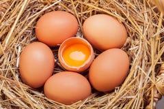 Die Eier gelegt mit Heu Lizenzfreies Stockbild