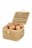 Die Eier im Korb Stockbilder