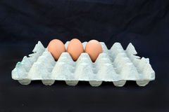 Die Eikästen mit drei Eiern Lizenzfreies Stockbild