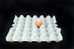 Die Eikästen mit einem Ei Lizenzfreies Stockbild