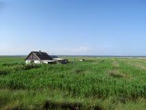 Die Einsiedler ` s Hütte in den Schilfen auf dem Strand Stockfoto