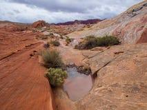 Die einzigartigen Felsenanordnungen des roten Sandsteins Stockfotos