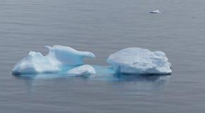 Die Eisberge, die durch Wind und Wasser gemeißelt sind, schwimmen leicht in die Antarktis Stockfoto