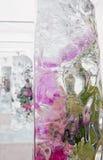 Die Eisblöcke mit lebendigen Blumen Stockfotos