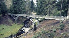 Die Eisen-Brücke bei Cragside, Northumberland Lizenzfreie Stockfotografie