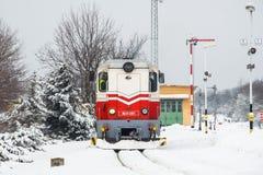 Die Eisenbahn der Kinder - Budapest Stockfoto