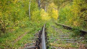 Die Eisenbahn läuft durch den schönen bunten Herbstwaldherbst Ein schöner szenischer Platz Stockfotos