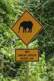 Die Elefanten, die kreuzen, Verkehrsschild herein Nationalpark Endau Rompin, Johor, Malaysia Stockfoto