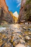 Die Engen in Zion National Park, Utah lizenzfreie stockbilder