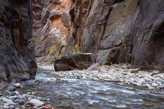 Die Engen in Zion NP Stockbild