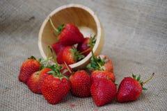 Die Erdbeere Lizenzfreies Stockbild