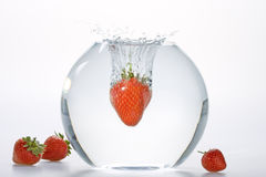 Die Erdbeeren, die in Wasser fallen, rollen Stockfotos