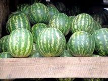 Die Ernte von Wassermelonen in Tiflis Lizenzfreie Stockfotos