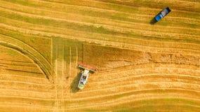 Die Erntemaschine, die auf dem Gebiet arbeitet und mäht Weizen ukraine Schattenbild des kauernden Geschäftsmannes Lizenzfreie Stockbilder