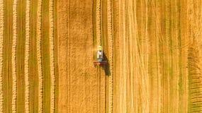 Die Erntemaschine, die auf dem Gebiet arbeitet und mäht Weizen ukraine Schattenbild des kauernden Geschäftsmannes Lizenzfreie Stockfotografie