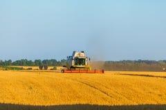 Die Erntemaschine, die auf dem Gebiet arbeitet und mäht Weizen ukraine Stockfotografie