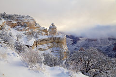 Schnee umfaßte Landschaft am Grand Canyon Lizenzfreie Stockfotos