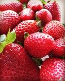 Die erste Erdbeere stockfoto