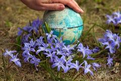 Die ersten Blumen Lizenzfreie Stockfotos