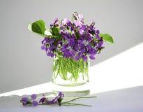 Die ersten Blumen Lizenzfreies Stockfoto