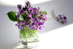 Die ersten Blumen Stockfotografie