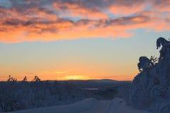 Die ersten Strahlen der Sonne nach der Polarnacht auf der Straße im schneebedeckten Nordwinterwald Lizenzfreie Stockfotografie