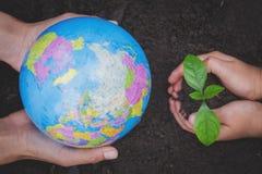Die Erwachsenen, die eine Kugel- und Kinderhand hält einen kleinen Sämling, Anlage ein Baum halten, verringern die globale Erwärm lizenzfreies stockfoto