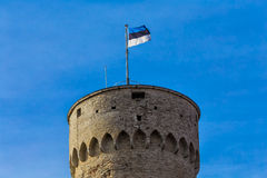 Die estnische Flagge in Tallinn, Estland Lizenzfreie Stockbilder