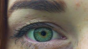 Die extreme Nahaufnahme des Frauenauges, die mit grünen Augen der Sommersprossen weiblich ist, schauen und öffnen Iris stock footage