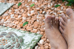 Die Füße des Gärtners Stockfoto