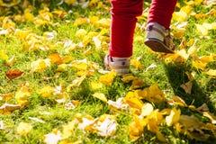 Die Füße des Kindes, die auf dem Gras laufen lizenzfreie stockfotografie