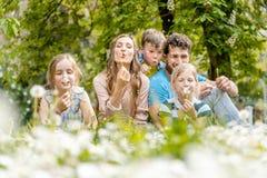 Die fünfköpfige Familie, die auf einem Schlaglöwenzahn der Wiese sitzt, blüht lizenzfreies stockbild