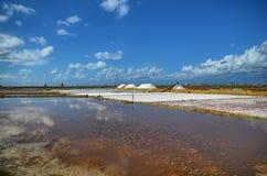 Die fabelhaften Salzpfannen von Trapan Stockbild