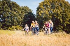 Die Familie, die ihre Fahrräder reitet, schoss über einem Kornfeld Lizenzfreie Stockfotos