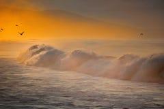 Die Farbe des Sonnenaufgangs Lizenzfreies Stockbild