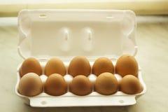 Die Farbe mit zehn Hühnereien inopen Schaumverpackung, Draufsicht Stockfoto