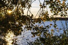 Die Farben des Herbstes lizenzfreie stockbilder
