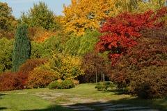 Die Farben des Herbstes Stockbild