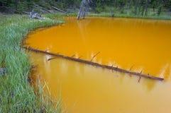 Die Farben-Töpfe, Nationalpark Kootenay lizenzfreies stockfoto