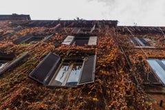 Die Fassade wird mit Anlagen bedeckt Stockbilder
