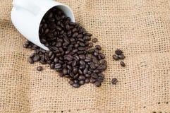 Die feinsten Kaffeebohnen Stockbilder
