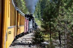 Die Feldbahn von Durango zu Silverton, das durch Rocky Mountains durch die Fluss Animas in Colorado USA läuft Stockfoto