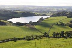 Die Felder von West-Lothian Lizenzfreie Stockbilder