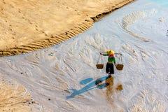 Die fishermans im intertidalen Küstengebiet Stockfoto