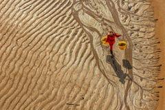 Die fishermans im intertidalen Küstengebiet Lizenzfreie Stockfotografie