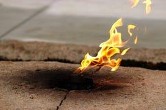 Die Flamme Stockbild
