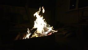 Die Flamme des Feuers ist offen das Feuer brennt nachts stock video