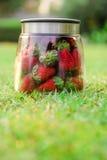 Die Flasche der Erdbeere Lizenzfreies Stockbild